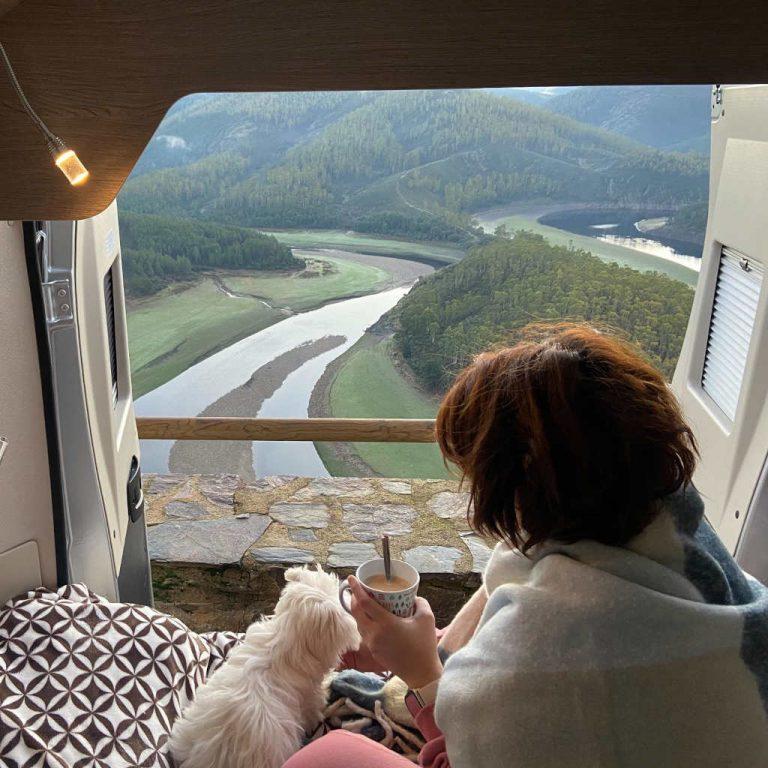 viajar con perro autocaravana