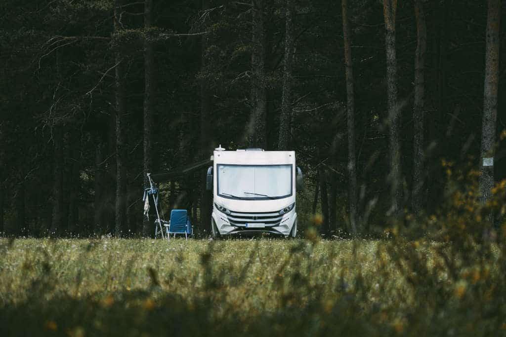 autocaravana bosque